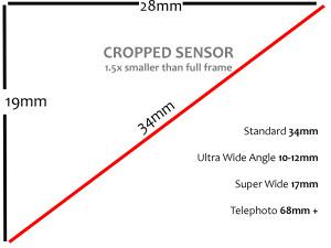 Cropped-sensor-size