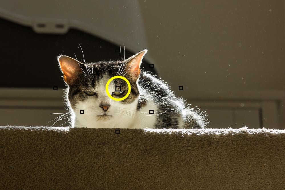 spot-metering